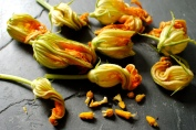 removing stamen from squash blossoms