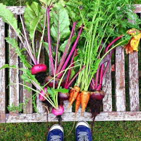 fresh garden vegetables by food to glow